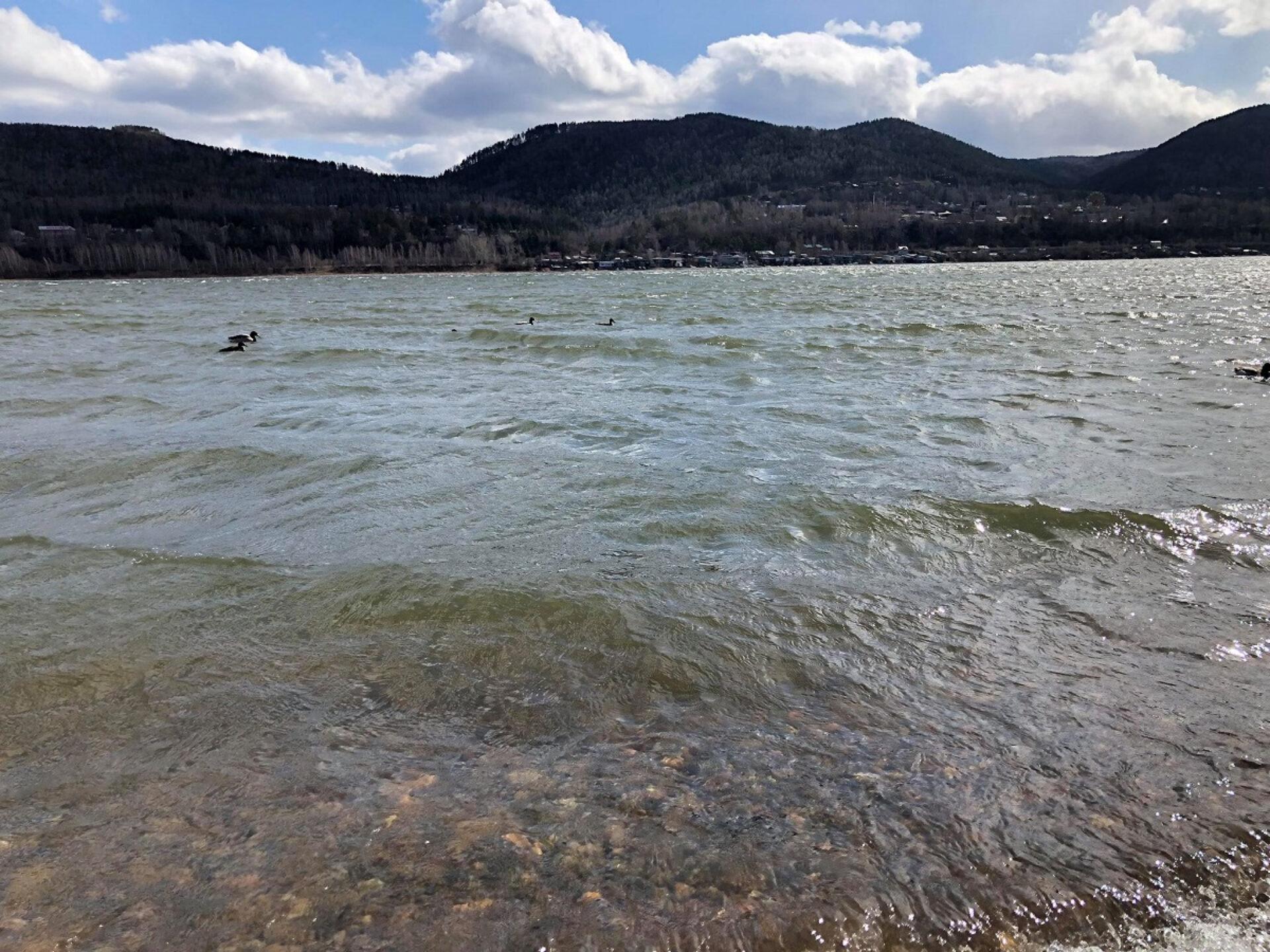 Весной наберегу реки Енисей
