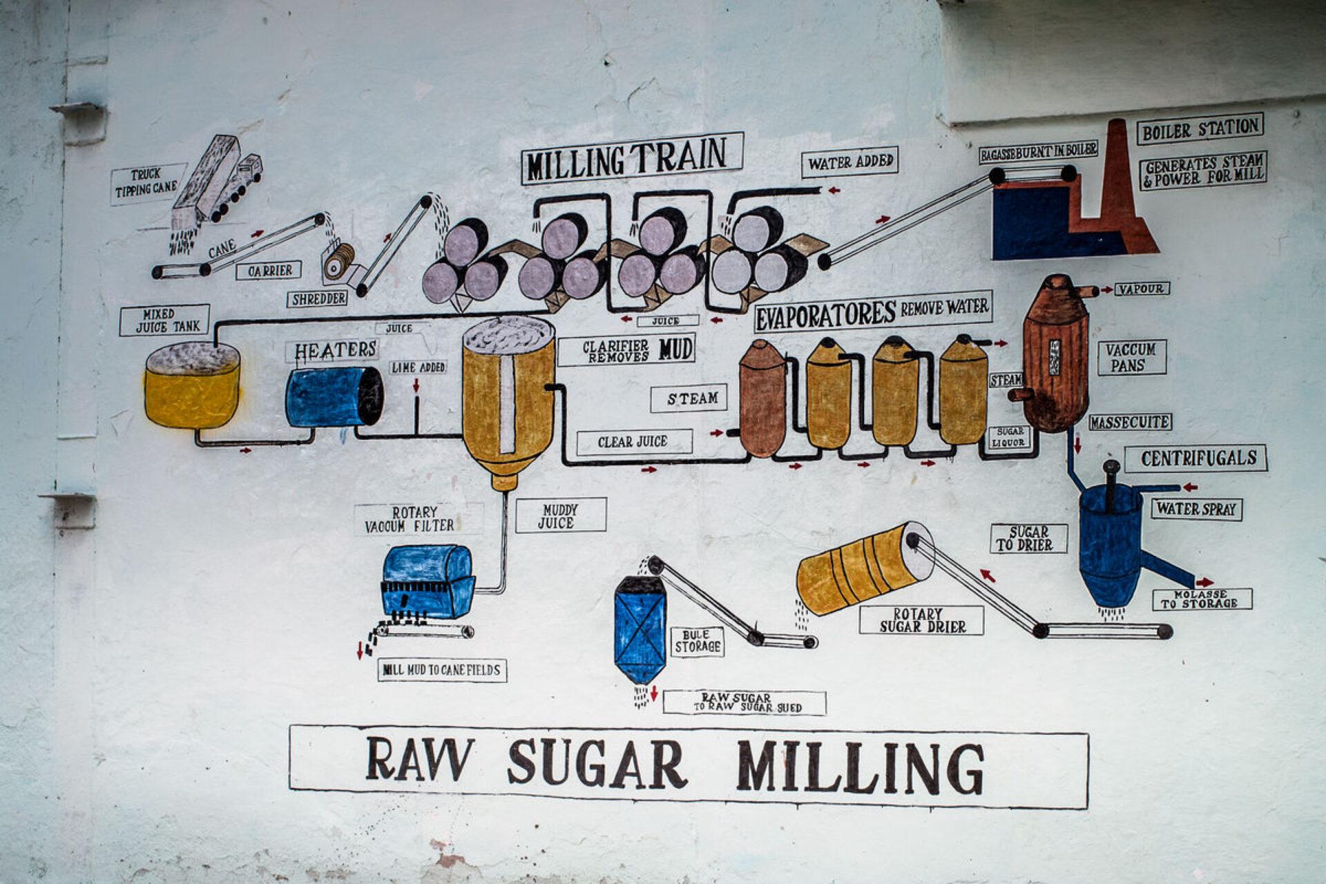 Без сахара нет страны
