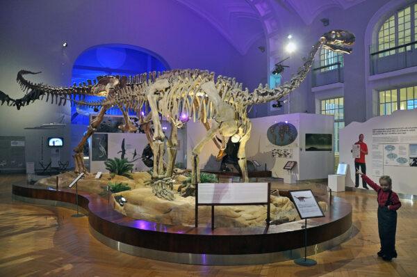 Музей естествознания вХельсинки