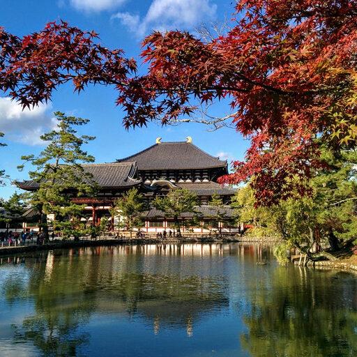 Почему в Японию надо ехать осенью