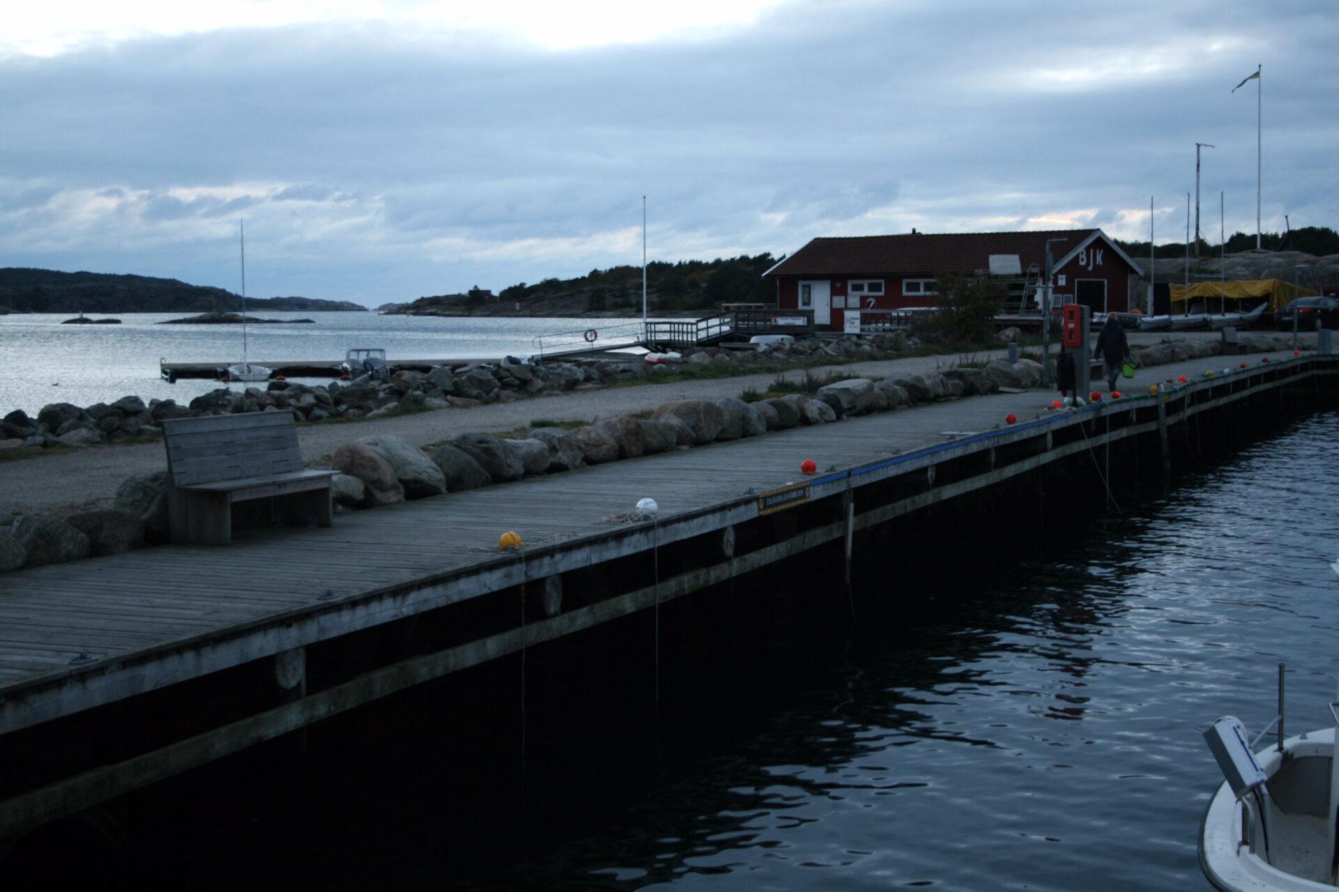 Охота наомара взападной Швеции