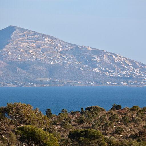Новогодние каникулы в Афинах.