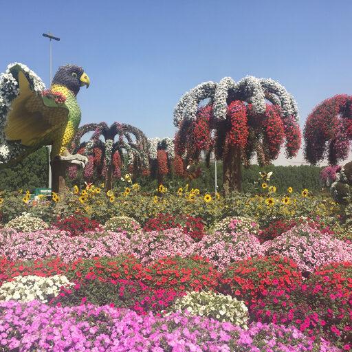 Парк цветов или Dubai Miraclе Garden