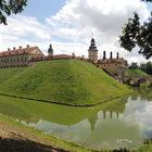 Изсолнечной Сибири вдождливую Беларусь. Часть 4: Несвижский замок