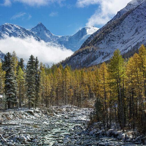 Алтай, к подножию Белухи