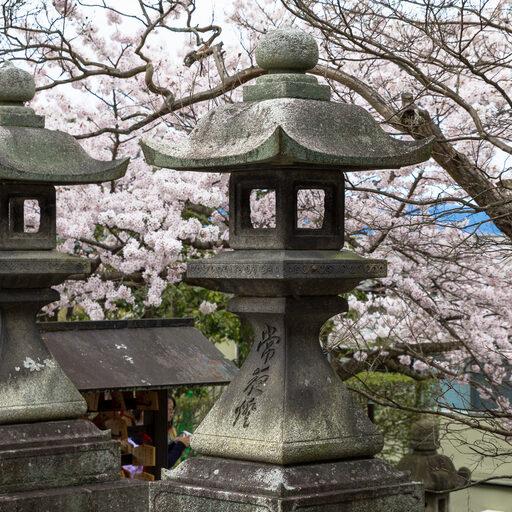 Прогулки по Киото: По дороге к храмам